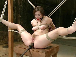 Bound, Gagged and DP'd