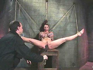 Bella's fucking amazing tits!